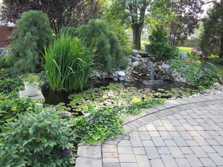 pond-landscape-central-pa